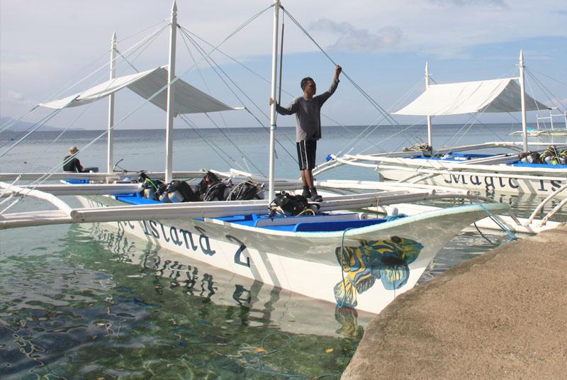 Moalboal dive sites magic resorts - Magic oceans dive resort ...