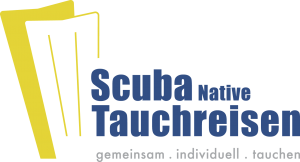 Logo Scuba Native